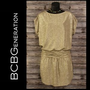 Silver & Gold Mini Dress by BCBGeneration